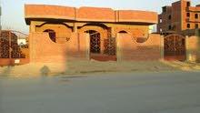 بني سويف الحي الثالث شرق النيل