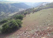 terrain 36000m au rabat avennu Mohammed 6 km 10.