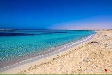 قطعة ارض داخل مخطط شاليه  في البحر جميل  معروف