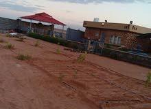 مزرعة بالقرب من الرئيسي في طبرق