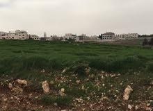للبيع ارض مميزة جدا في ربوة عبدون منطقة فلل مساحة 502 متر