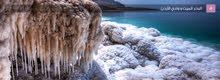 مطلوب وكلاء لمنتجات البحر الميت