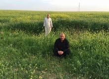 ارض زراعية في الموصل