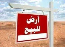 أرض مميزة جدا للبيع خلف جامعة السلاب (بالمنصورة) , للإستثمار الجاد أو البناء