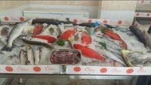مطلوب شيف أسماك مصري