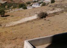 قطعة أرض للبيع في مرج الحمام الطبقه خلف مدارس الخمائل