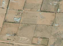 مزرعة 8 هكتار للبيع او التبديل بعقار او ارض في طرابلس
