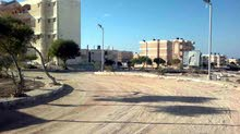 امتلك قطعة ارض ف مرسي مطروح 200 متر