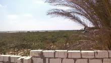 أرض زراعية للبيع بمصر