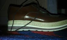 حذاء ستايل جديد فد شي