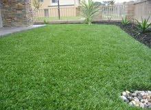 عشب صناعى ضمان 7 سنوات /عشب جدارى