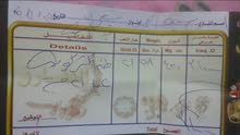 تخم كامل ذهب عيار21 كويتي