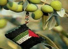 زيت زيتون فلسطين ( نابلس )