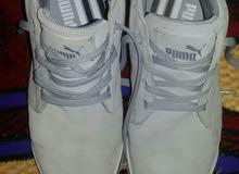 حذاء ماركة puma