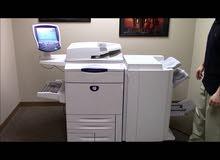 زيروكس Xerox 242 DocuColor 242