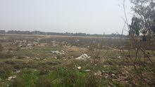 أرض صناعية طابو صناعي 3 دونم