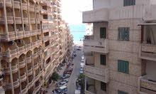 عقار للبيع بالاسكندرية العصافرة بحرى 300 متر