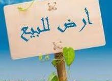 اربد ارض للبيع حوض الجزيرة قرب حدائق الملك عبدالله تنظيم فلل فقط