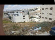 land for sale amman