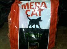أكل قطط ميرا كات