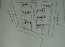 مخطط قطع اراضي بوعطني شارع ارض بعيرة (شهادة عقارية ملك)