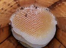 جميع انوع العسل الطبيعي من مناحلنآ
