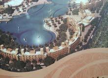 فرصة استثمارية براس مال قليل 3 اسابيع للبيع في منتجع البحيرة (طريق البحر الميت)