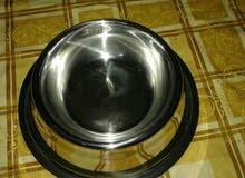 طبق طعام للقطط والكلاب الصغيرة