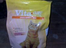 أكل قطط فيتا داى
