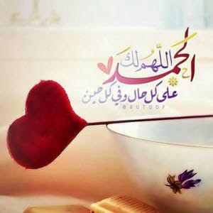 احمد عبد المنعم