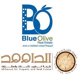 داوود للعقارات- الزيتونة الزرقاء للاسكان