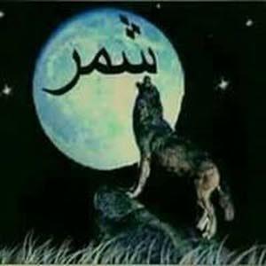 اسد شمر
