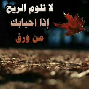 حسين البغدادي حسين