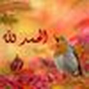 ashraf abdelaziz