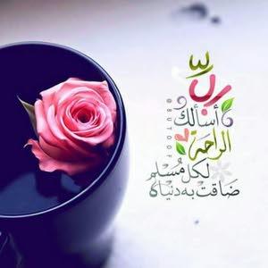 ابو حسن ali