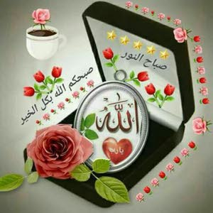ابوارشد